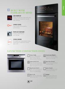 Fotile Built-In Oven 02